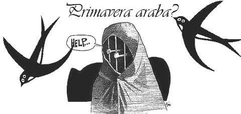 vignetta-una rondine non fa primavere-arabe