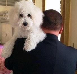 Berlusconi di spalle con dudù